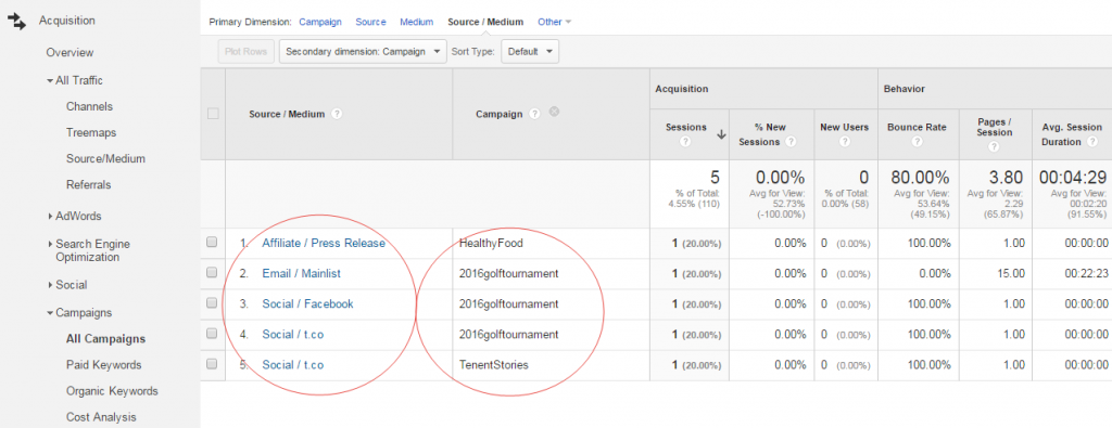 Example of Marketing Campaign Tracking in Google Analytics