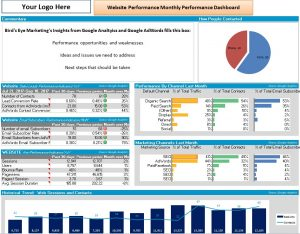 Bird's Eye Marketing Website Performance Dashboard