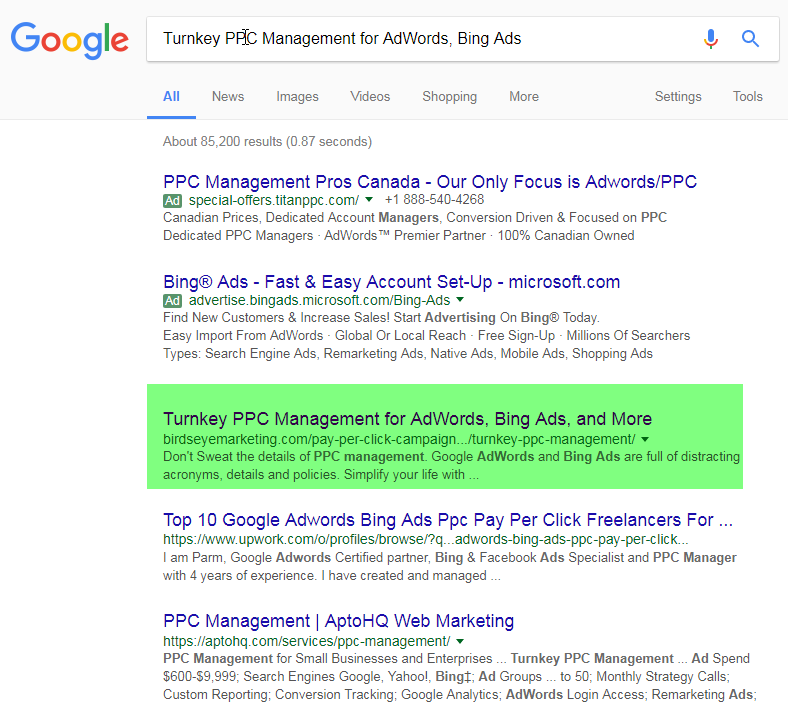 What Do Your Pages Show in Google Search Results?