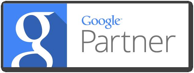 Google Partner Badge - Bird's Eye Marketing